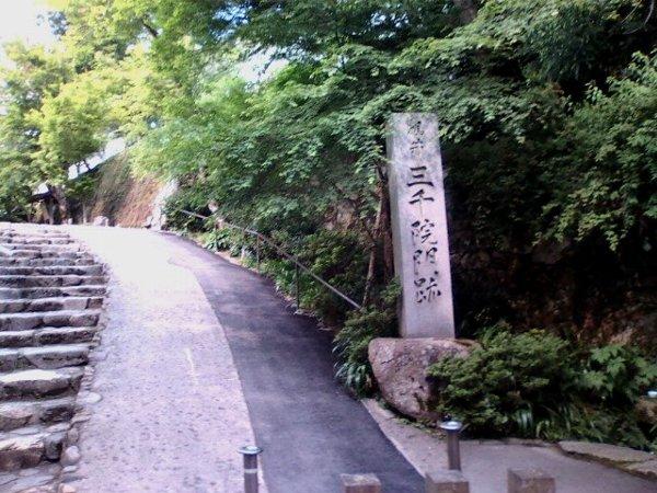 sanzenin-kyoto-030.jpg