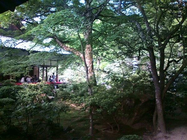 sanzenin-kyoto-039.jpg