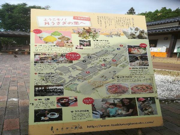 tsukiusagi-kagashi-023.jpg