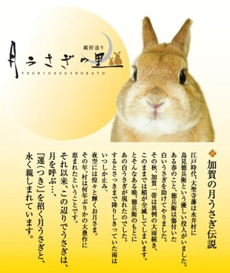 tsukiusagi-kagashi-034.jpg