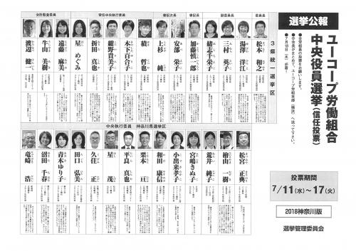 2018yakuinsenkyo_kanagawa.jpg
