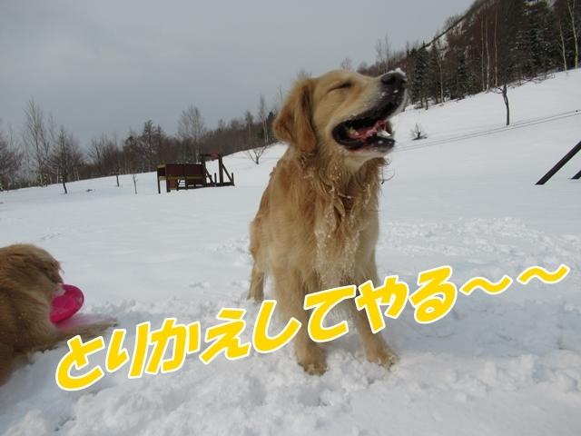 IMG_0124.jpg
