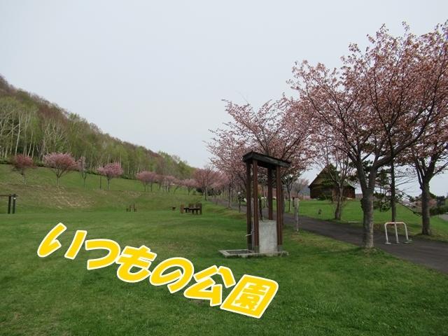 IMG_5282.jpg