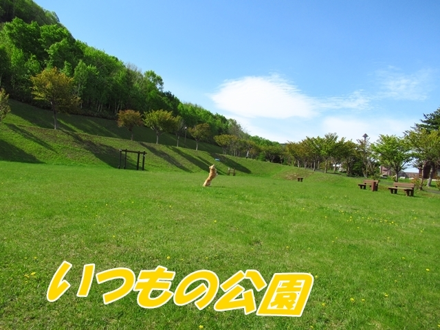 IMG_6778.jpg