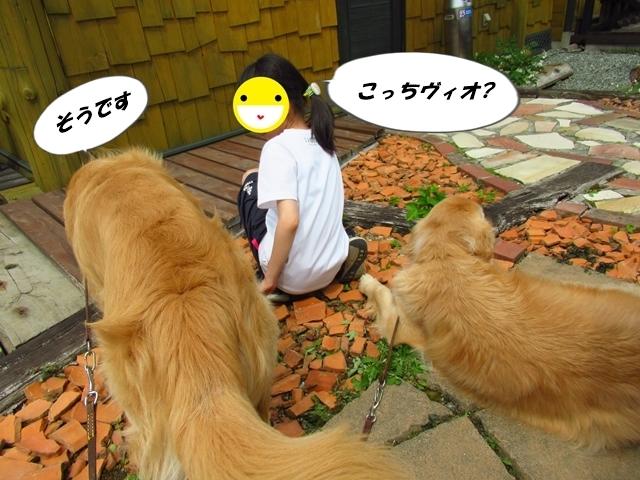 IMG_8263.jpg