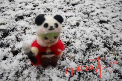 雪と僕サマ