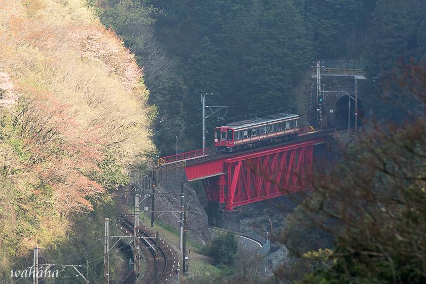 280403kouyasen-15.jpg