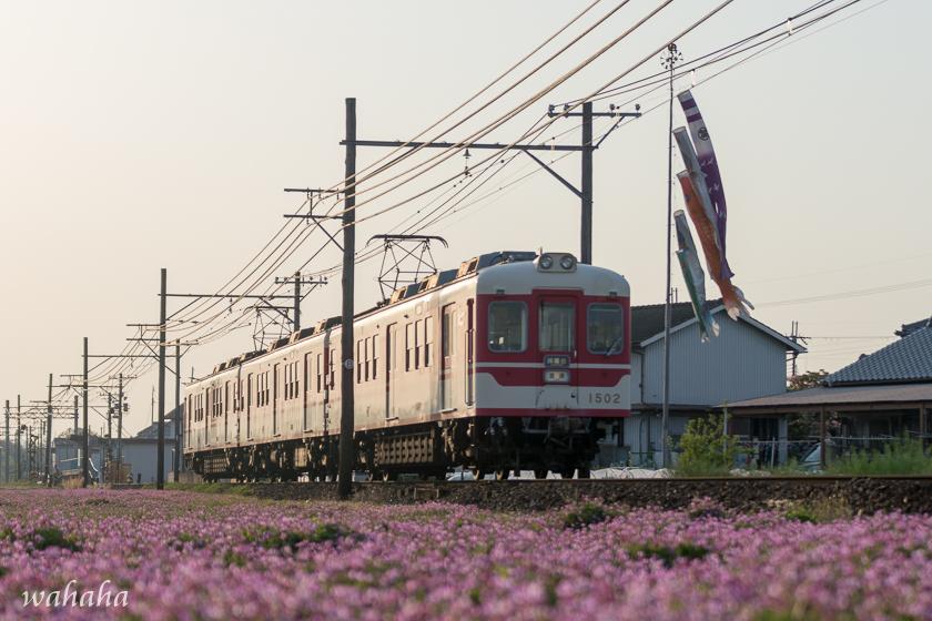 300428sintetsu_hata-3.jpg