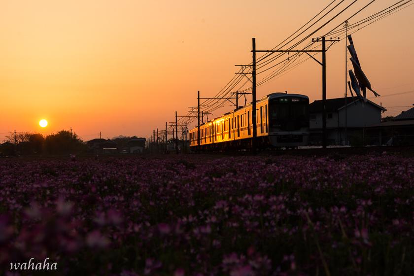 300428sintetsu_hata-4.jpg
