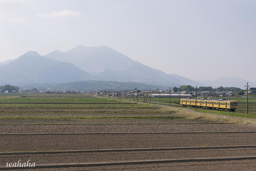 300429sangi-11.jpg
