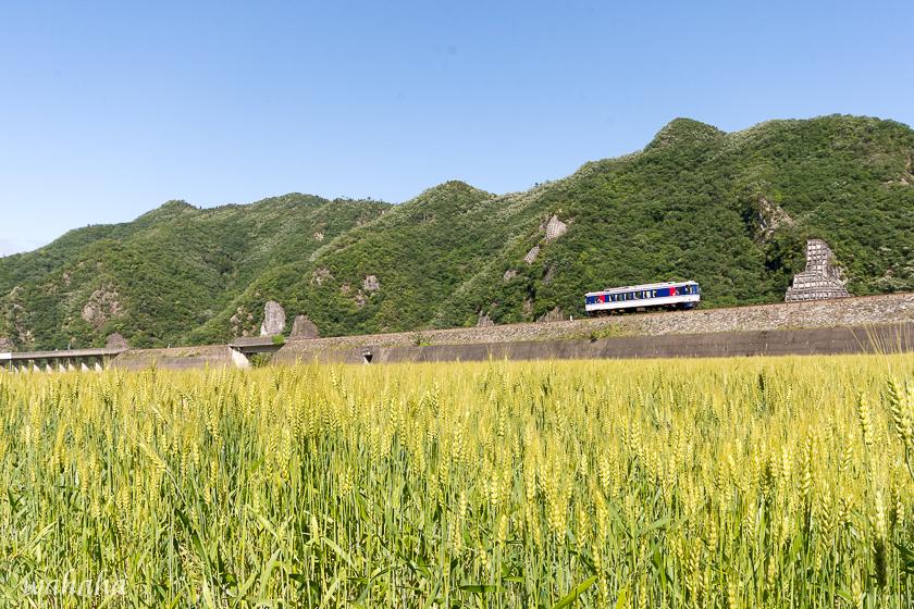 300519chizu-1.jpg