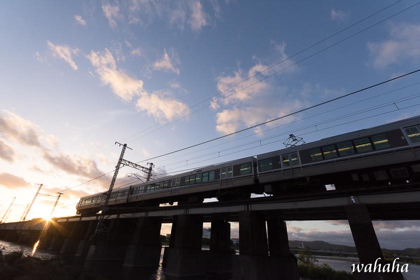 300519ichikawa-2.jpg