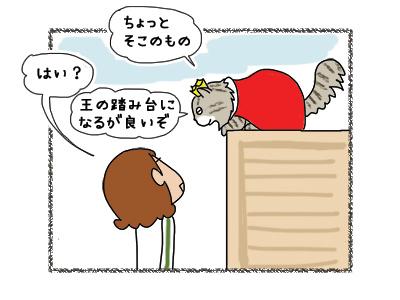 01052018_cat1.jpg