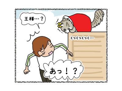 01052018_cat4.jpg