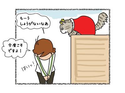 01052018_cat6.jpg