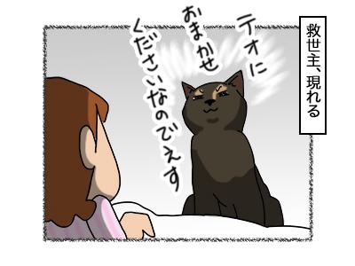 01062018_cat2.jpg