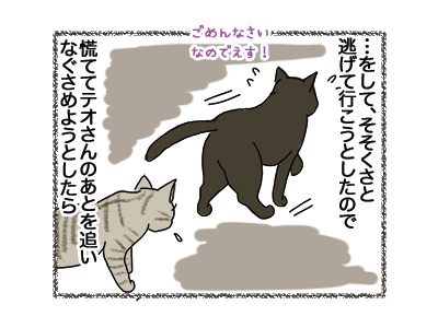 02052018_cat4.jpg