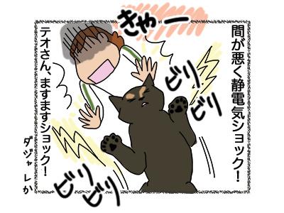 02052018_cat5.jpg