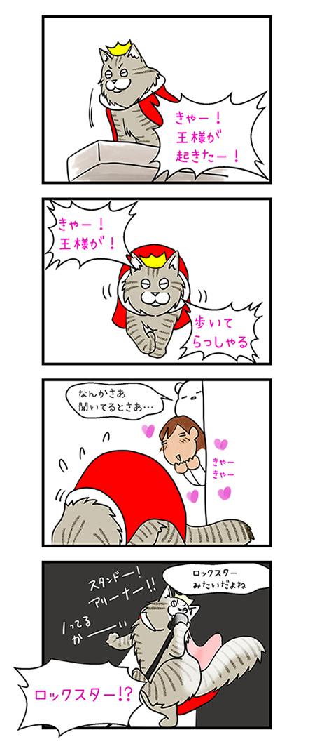 02072018_cat4koma.jpg