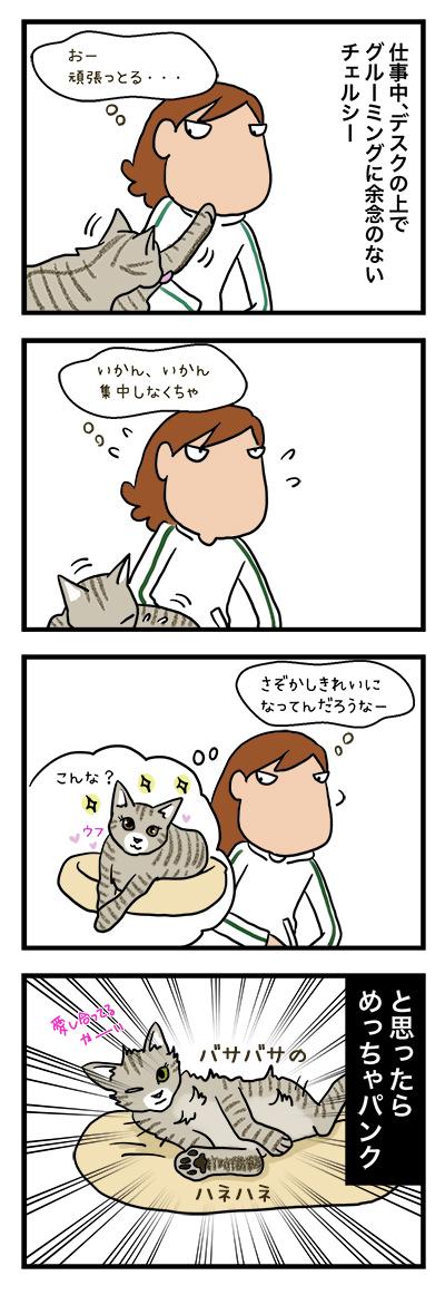 03072018_cat4komaB.jpg