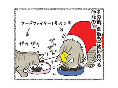 04062018_cat2.jpg