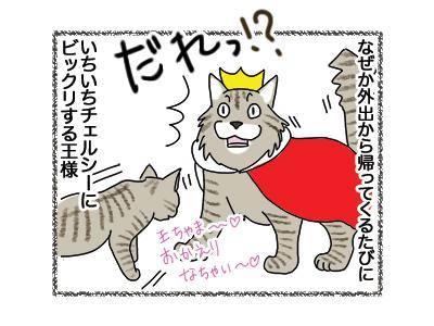 04062018_cat3.jpg