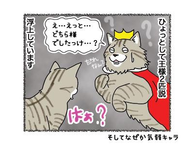 04062018_cat4.jpg