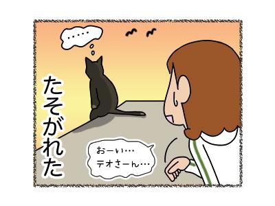 05042018_cat5.jpg