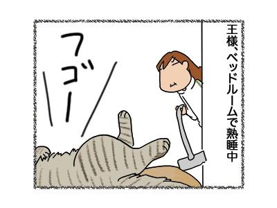 05062018_cat2.jpg
