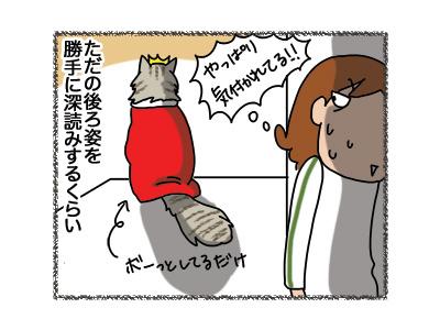 06042018_cat4.jpg
