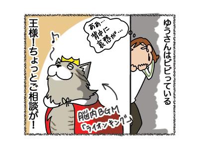 06042018_cat5.jpg