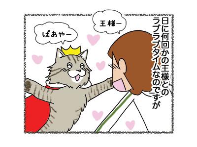 07062018_cat1.jpg