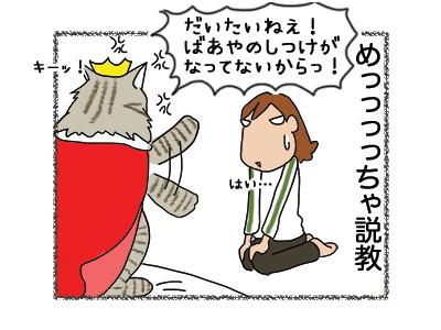 07062018_cat5.jpg