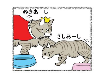 09062018_cat3.jpg