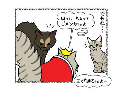 11042018_cat2.jpg