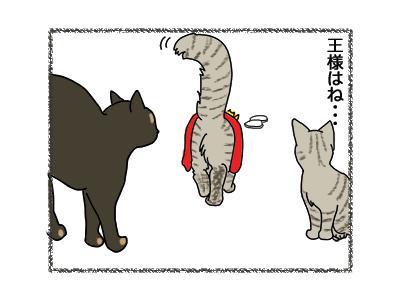 11042018_cat3.jpg
