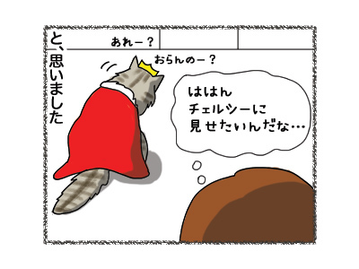 11052018_cat5.jpg