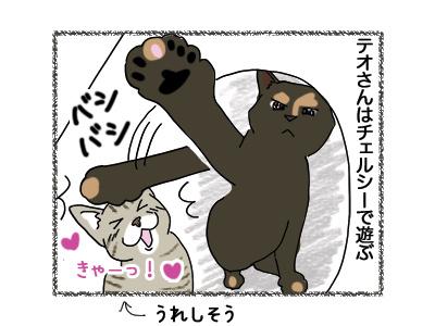 11062018_cat3.jpg