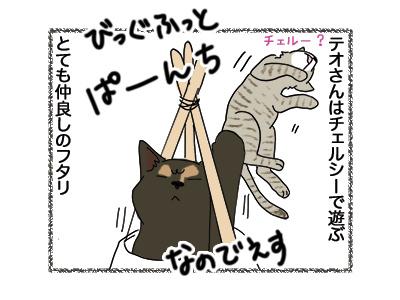 11062018_cat6.jpg