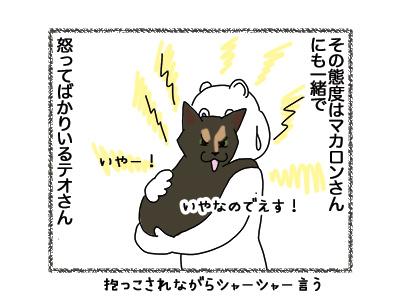12042018_cat2.jpg
