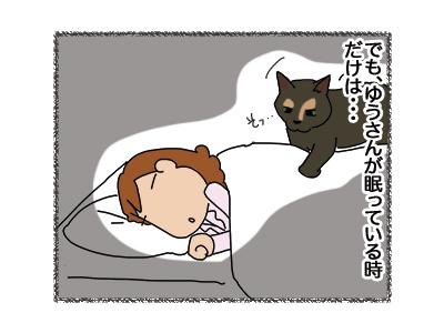 12042018_cat3.jpg