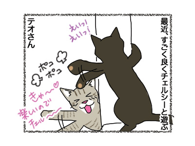 12062018_cat1.jpg