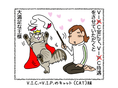 13062018_cat5.jpg