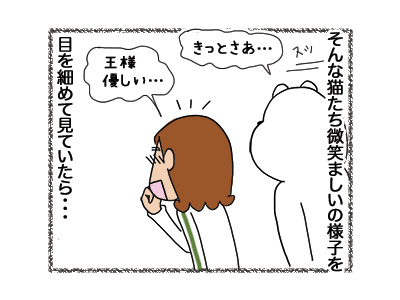 14032018_cat3.jpg