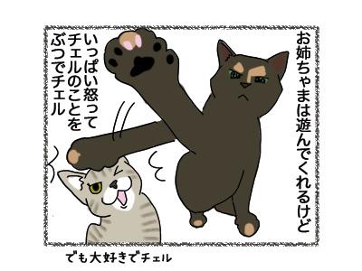 14052018_cat1.jpg