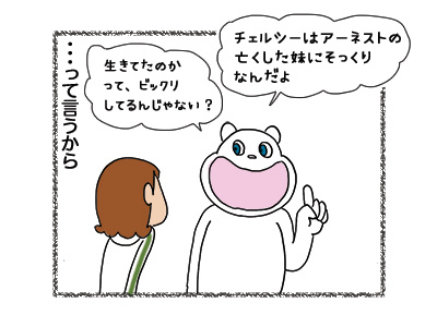 14052018_cat4.jpg