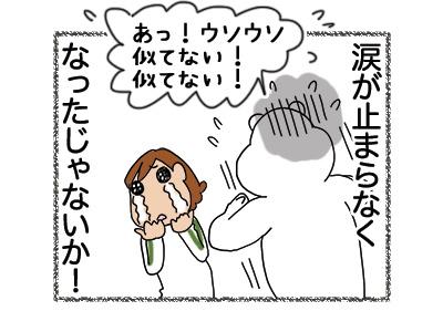 14052018_cat5.jpg
