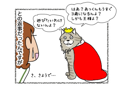 16052018_cat2.jpg