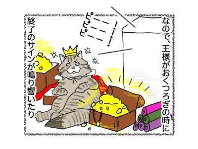 16062018_cat2.jpg