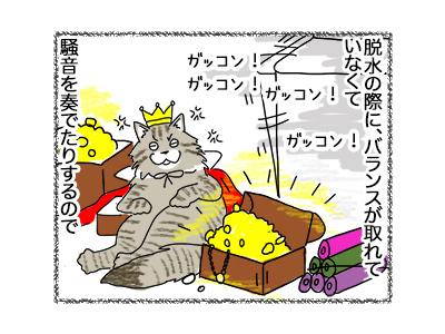 16062018_cat3.jpg